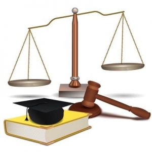 Criminal Justice Professional